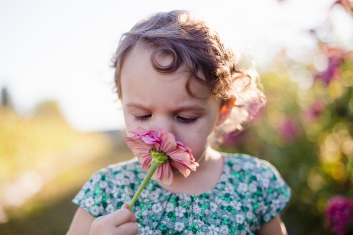 Winchester Va Newborn Photographer-4